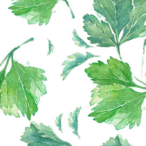 Parsley Pattern