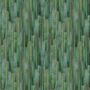 Cactus2_flat