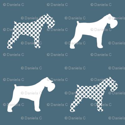 Miniature Schnauzer polka dogs