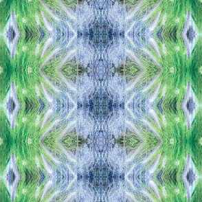 Grassy Kaleidescope
