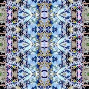 Echeveria Kaleidoscope