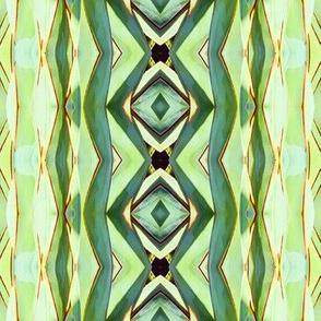 Cactus Kaleidescope