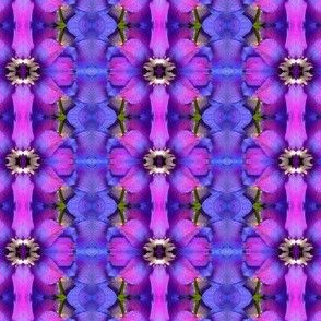 Symmagery Iridescent Delphinium