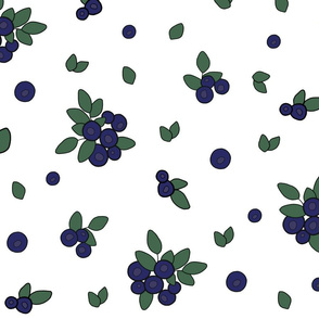 Bluberry, Large