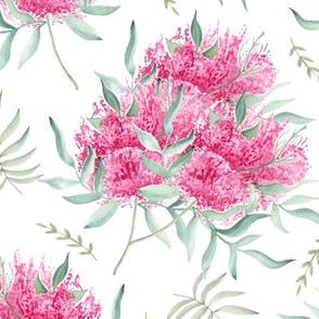 Pink flowers. Watercolor