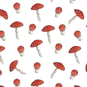 Mushrooms. Watercolor