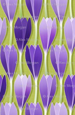 Saffron Garden
