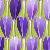Crocus_03_shop_thumb