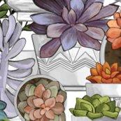 Rcolored-succulents_shop_thumb