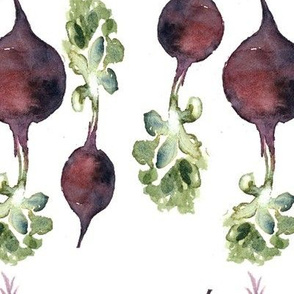 Beetroot family