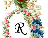 Rvintage-peacock-feather-frame-transparent-background_thumb