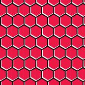 Honeycomb Cherry Tomato