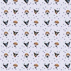 Doggy Polka