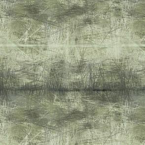lichen_green landscape
