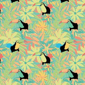 Toucan Bright