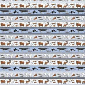 arctic stripe l 4x4