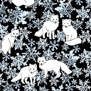 Foxes & Flakes