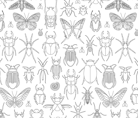 Bugs Coloring Page Fabric Mariafaithgarcia Spoonflower