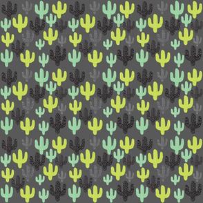 Gray Cactus