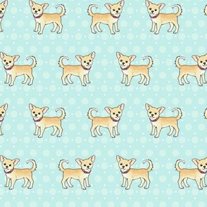 Chihuahuas on pastel blue
