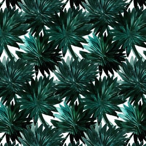 Cypress Palm S