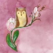 owl & bloom