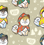 Siberian puppies