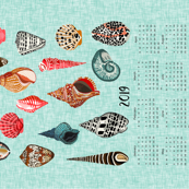2019 shells tea towel calendar - shells by andrea lauren