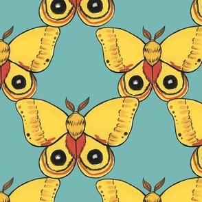 Io Moths (large scale)