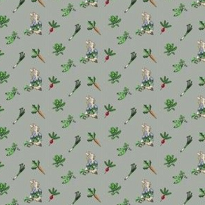 Peter Rabbit Modern Vegetable Toss - Mini Scale