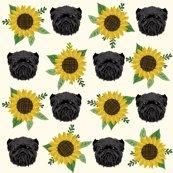 Raff-sunflower-cream_shop_thumb