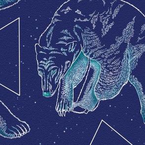 Polarbears and stars 04