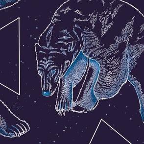 Polarbears and Stars Constellation