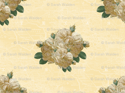 Redoute Yellow Rose of Texas _ Dusty Trails ~ White on Country House