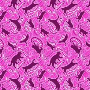 Paisley-cats-kittens-version2