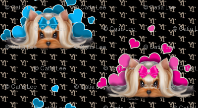 Yorkie Beauty YT B Blue Pink M