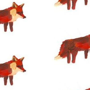 All The Foxes (Medium)