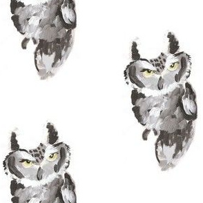 Screech Owl (Medium)