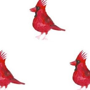 Cardinals (Medium)