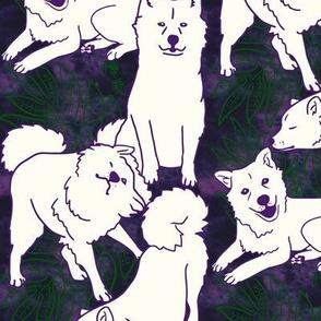 Laua'e Breezeley (purple)