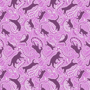 Paisley-cats-kittens-ornamental-v5