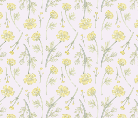 Buttercup Pattern fabric by ericacatherineillustration on Spoonflower - custom fabric