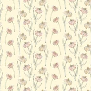 Coneflower Pattern