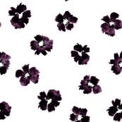 ink daisy