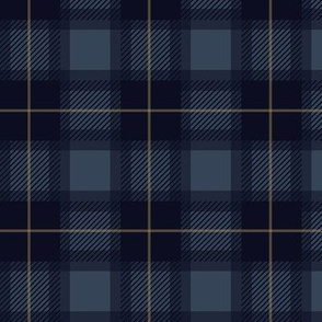 Fall Blue Plaid