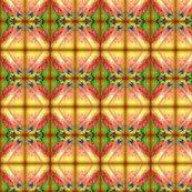 Rrimg005_ed_ed_shop_thumb