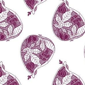 Fresh Fruit Fig in Burgundy