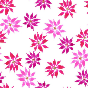 Poinsettia Flowers - Pink - Large Scale