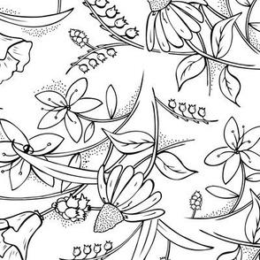 Isabella - Floral Sketchbook Coloring Book Style