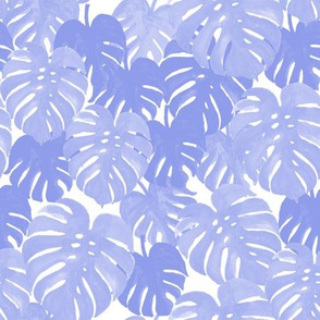palm  monstera pastel blue tropical leaves summer botanicals